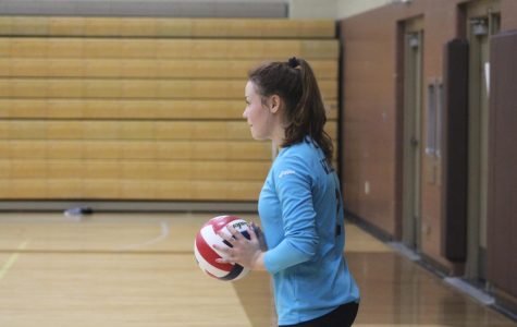 Fall Sports Preview: Volleyball