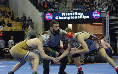 Pauli Leads Owls To Districts